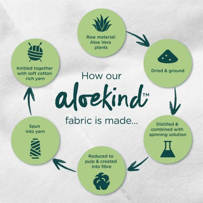 aloe kind infographic
